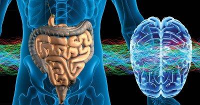Аутизм, 10 лет спустя, и структура мозга.